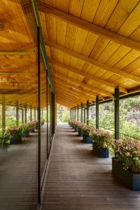 El Humedal-Valle de Bravo-TAAR-Taller de Arquitectura de Alto Rendimiento